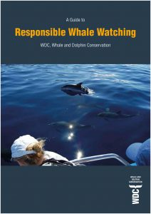 Responsible whale watching